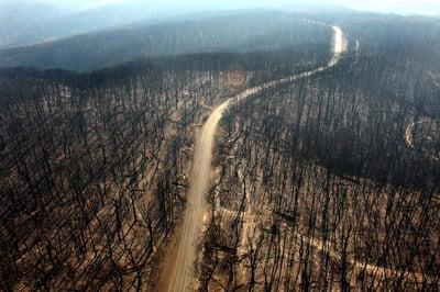 Bushfire Towns
